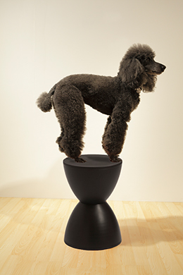 Bella Black Sallie Stool