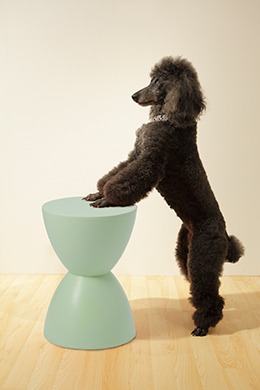 Bella and Green Sallie Stool