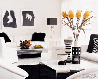 Graphic Black and White Room